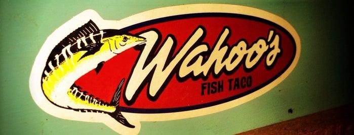 Wahoo's Fish Taco is one of Good Eats San Diego.
