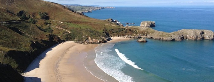 Playa de Niembro is one of Playas de España: Principado de Asturias.
