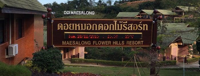 Maesalong Flower Hills Resort is one of Marisa 님이 좋아한 장소.