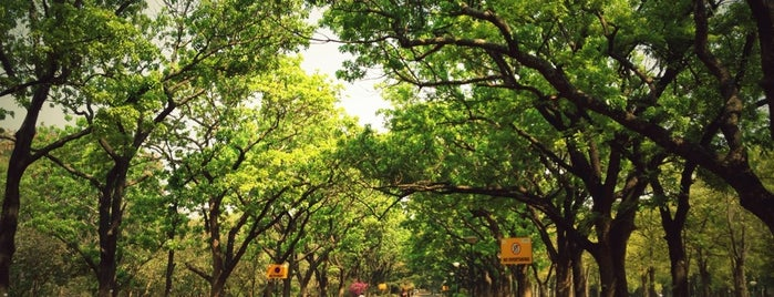 Cubbon Park is one of Bengaluru, India.