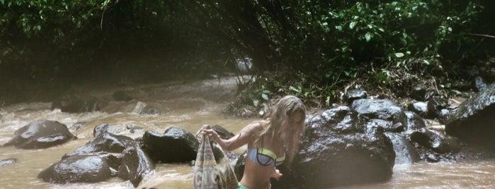 sekumpul waterfall is one of Bali.