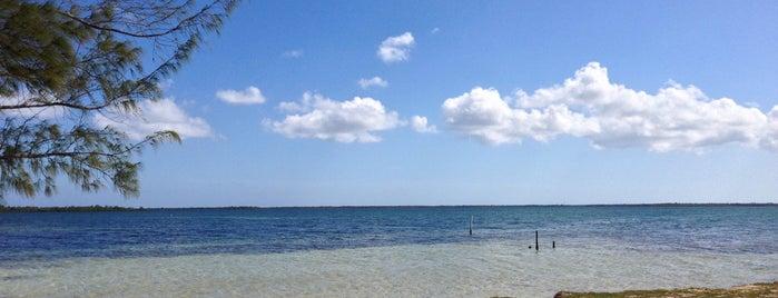 Cayman Kai Public Beach is one of Марина📷 : понравившиеся места.