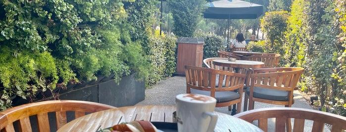 Caffè Nero is one of قبرص.