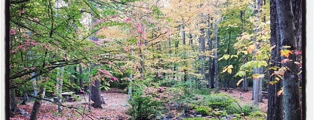 Ringwood State Park is one of Kaylina'nın Beğendiği Mekanlar.