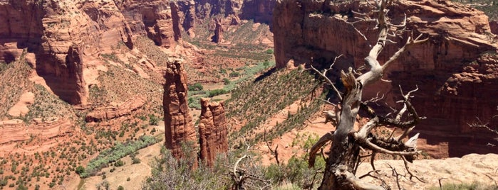Canyon De Chelly National Monument is one of Gespeicherte Orte von Lizzie.