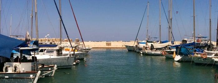 Jaffa Port is one of Summer in Tel-Aviv.