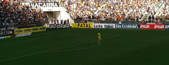 Arena Corinthians is one of O bicho em SP.