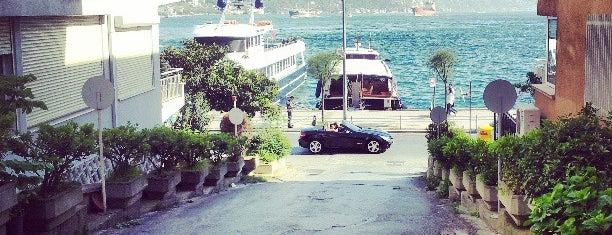 Arifi Pasa Korusu is one of Istanbul.