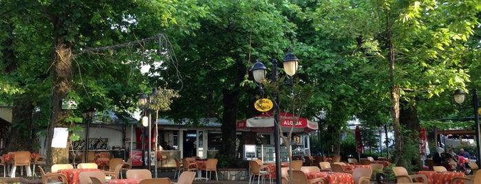 Çınaraltı Çay Bahçesi is one of สถานที่ที่บันทึกไว้ของ Gizemli.