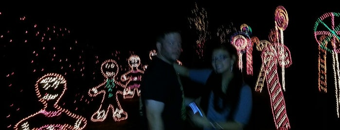 Christmas Lights Tour At Bellingrath Gardens is one of My Favorite Places.