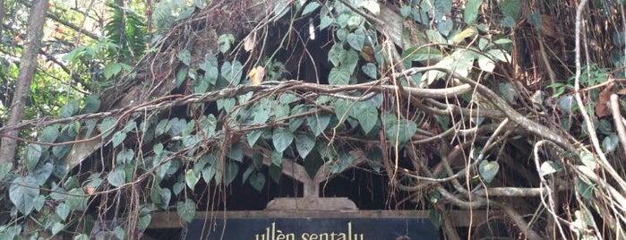 Museum Ullen Sentalu is one of Museum In Indonesia.