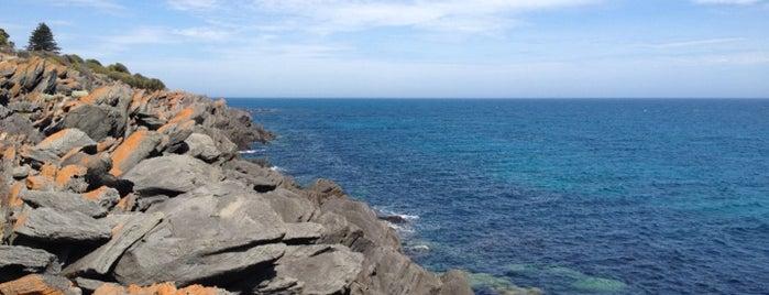 Kangaroo Island is one of Australia - Must do.