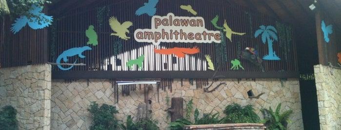 Palawan Amphitheatre is one of Singapura.