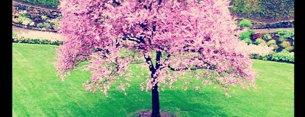Sunken Garden is one of So much to see!.