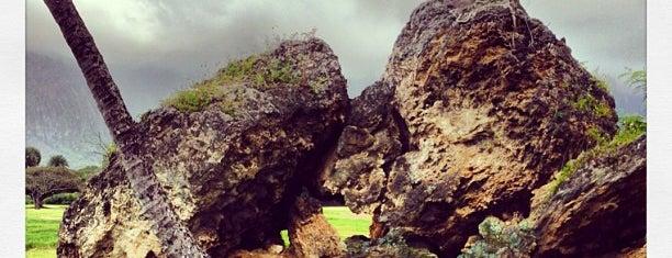 Olomana Golf Links is one of hawaii_oahu.