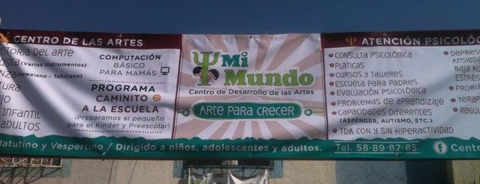 Centro Mi Mundo is one of Posti che sono piaciuti a Deyanira.