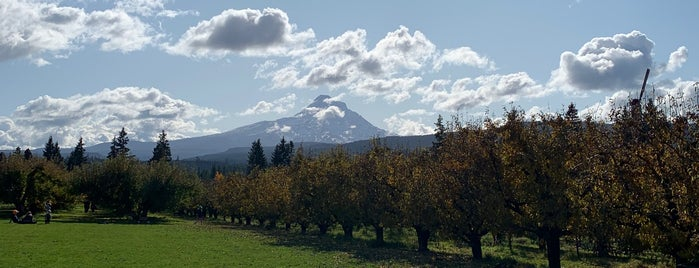 Mountain View Orchards is one of Oregon.