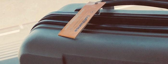 Lufthansa Flight LH 891 is one of Locais curtidos por Martins.