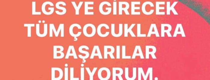 Fevzi Danış İlköğretim Okulu is one of aykut baran.
