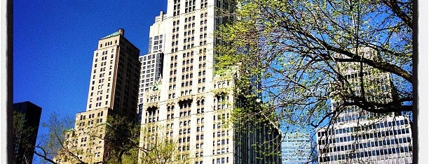 Woolworth Building is one of NYC Essentials.
