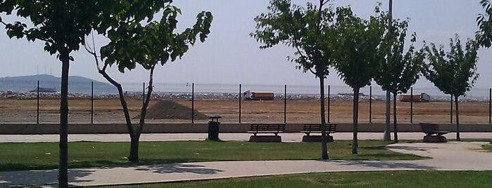Ideal tepe sahil is one of Sibel'in Kaydettiği Mekanlar.