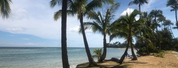 Wai'alae Beach Park is one of Hawaii.