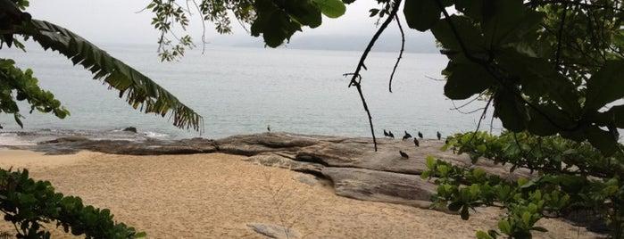 Praia Do Oscar is one of Ilhabela.