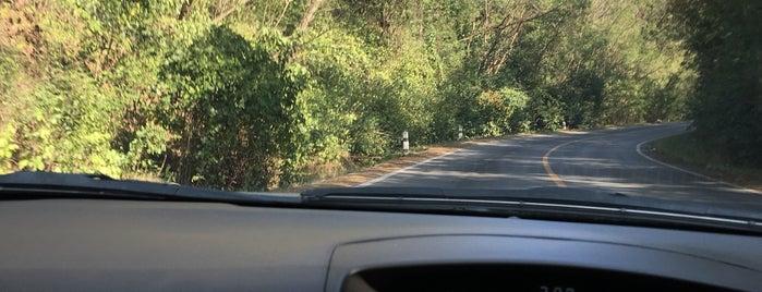 อุโมงค์ต้นไม้ is one of สระบุรี, นครนายก, ปราจีนบุรี, สระแก้ว.