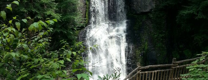 Bushkill Falls is one of Wishlist.