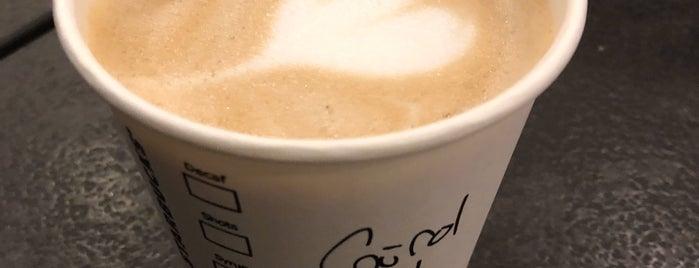Starbucks is one of Dilek'in Beğendiği Mekanlar.