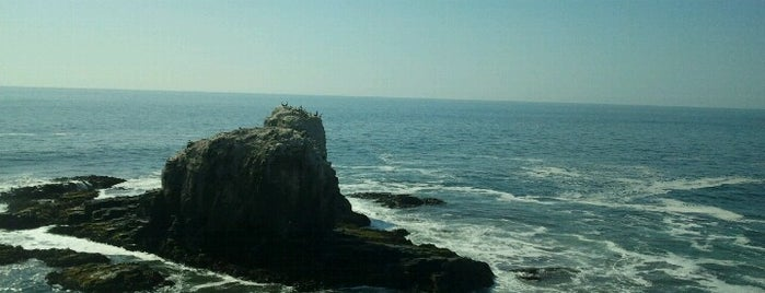 Punta de Lobos is one of Lugares e Cidades do chile.