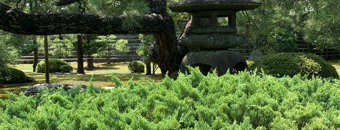 本丸庭園 is one of 西郷どんゆかりのスポット.