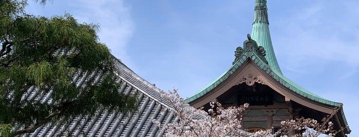 大雲院 is one of Japan.
