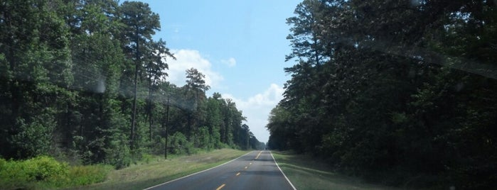 Davy Crockett National Forest is one of Bone Hill.