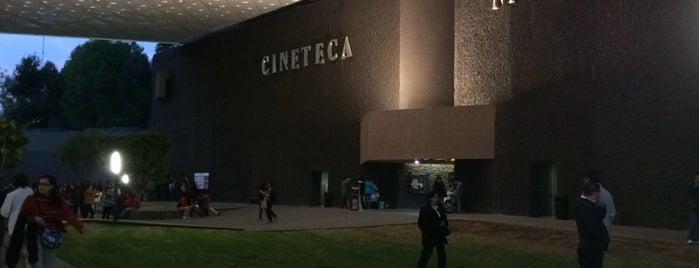 Cineteca Nacional is one of mejico.