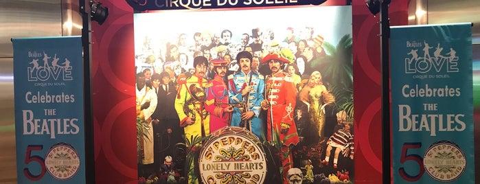The Beatles LOVE (Cirque du Soleil) is one of Jose : понравившиеся места.