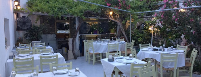 Apollon Garden Restaurant is one of สถานที่ที่ David ถูกใจ.