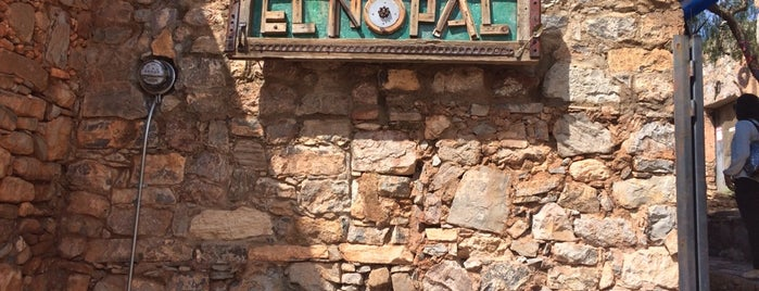 El Nopal Cósmico is one of SLP.
