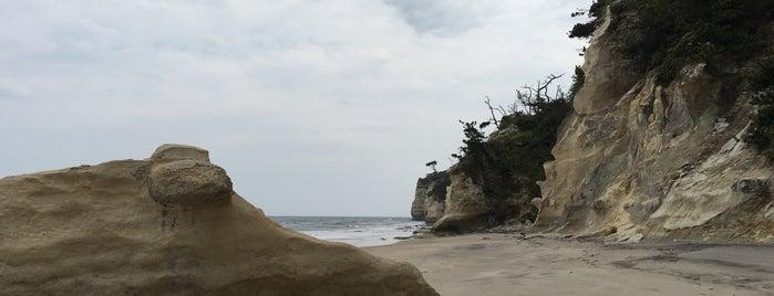 ささきの浜 is one of 茨城県北ジオパークのジオサイト.