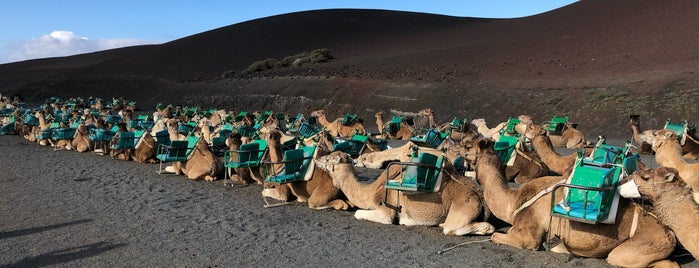 Echadero Camellos is one of Lieux qui ont plu à Rafael.