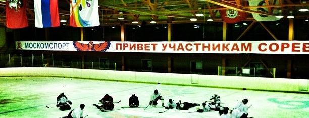 Ледовый каток «Радужный» is one of Lieux qui ont plu à Arkatov.