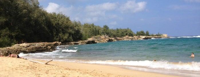 Mahaulepu Beach is one of Places to Visit: Kauai, HI.