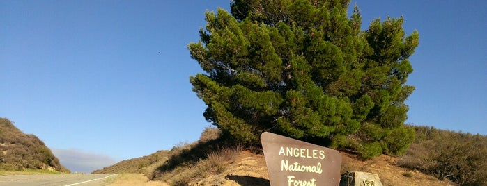 Angeles National Forest is one of LA Hitlist.