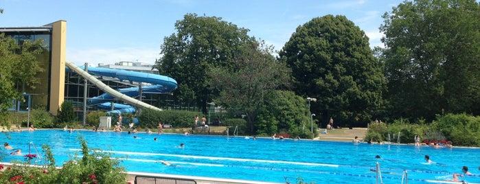 Taubertsbergbad Mainz is one of Schwimmbäder und Badeseen.