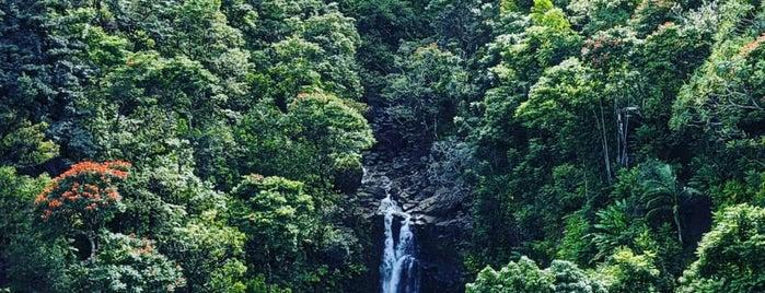 Puohokamoa Falls is one of Maui.