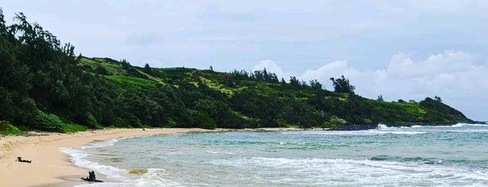 Moloa'a Beach is one of Kauai, Hawaii.