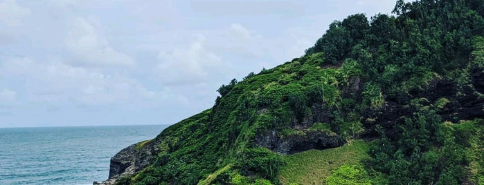 Kilauea Point National Wildlife Sanctuary is one of Jingyuan'ın Beğendiği Mekanlar.