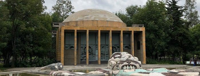 Museo Del Carcamo is one of Lugares favoritos de Yanira.