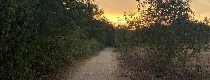 Barton Green Belt Trail is one of Austin.