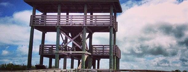 Boca Ciega Millennium Park is one of Toni 님이 좋아한 장소.